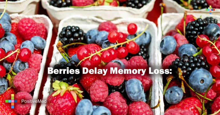 Berries Delay Memory Loss: