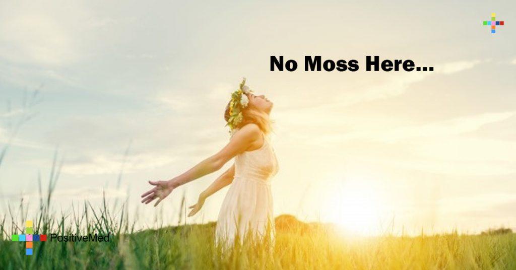 No Moss Here...