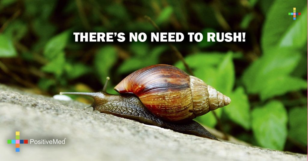 THERE'S NO NEED TO RUSH!