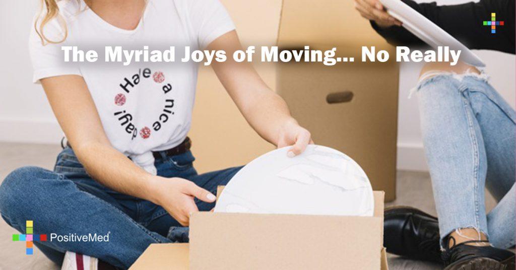 The Myriad Joys of Moving… No Really