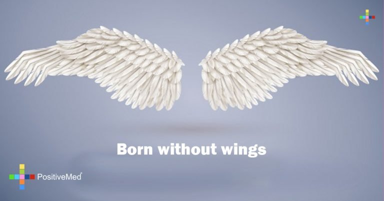 Born without wings