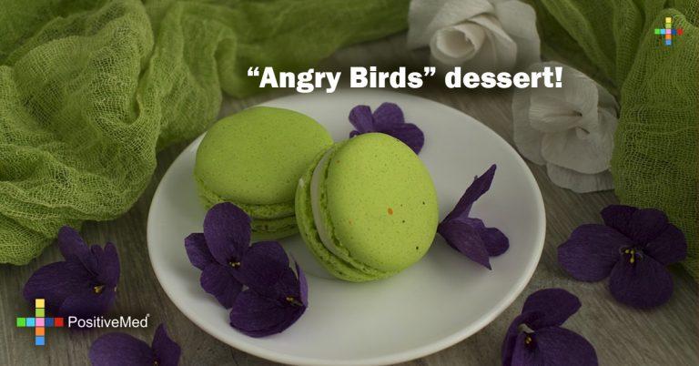 """Angry Birds"" dessert!"