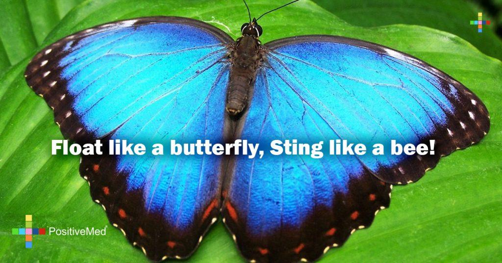 Float like a butterfly, Sting like a bee!