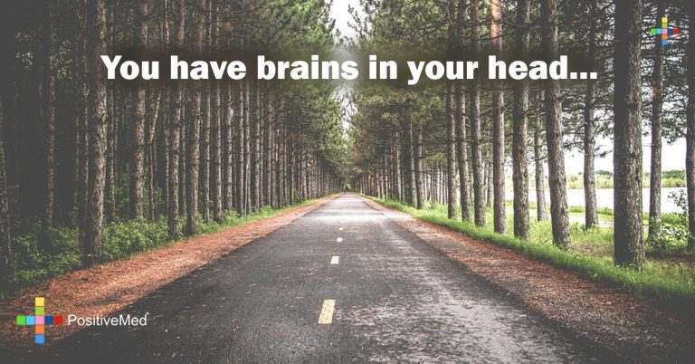 You have brains in your head…