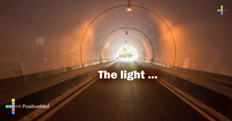 The light …