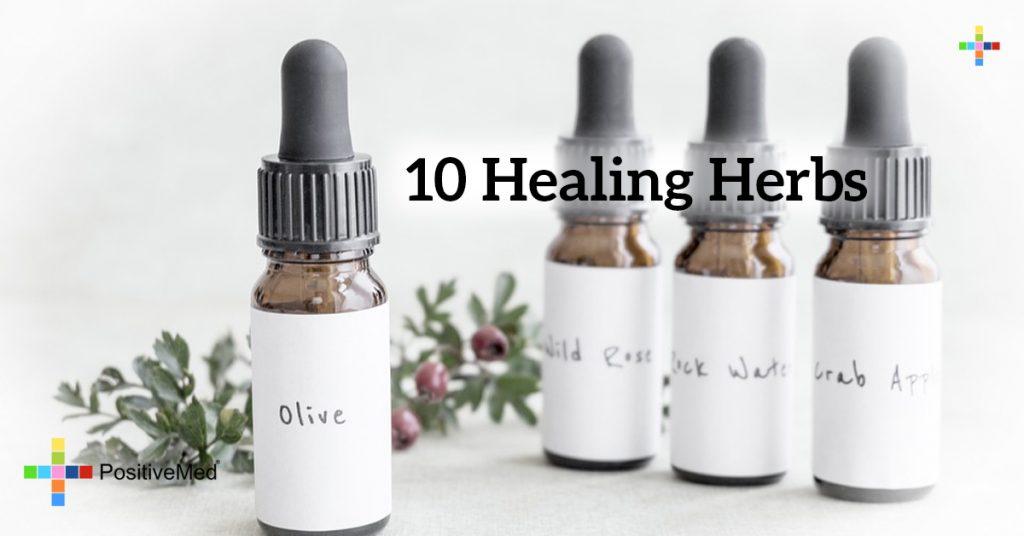 10 Healing Herbs