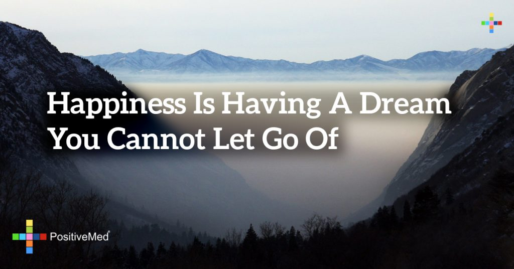happiness is having a dream you cannot let go of