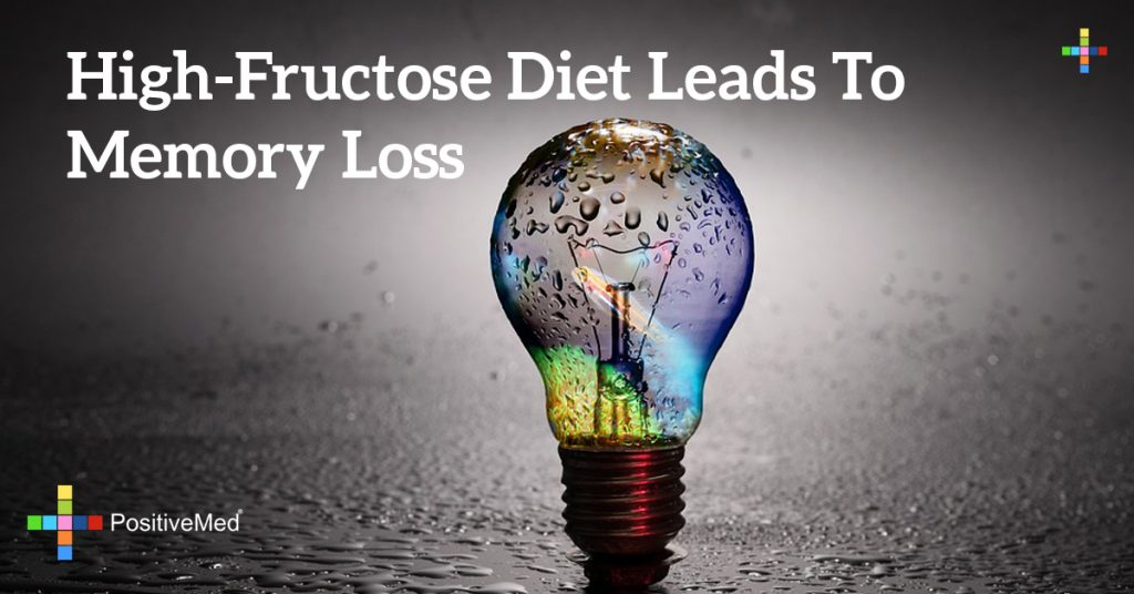 High-Fructose Diet Leads To Memory Loss
