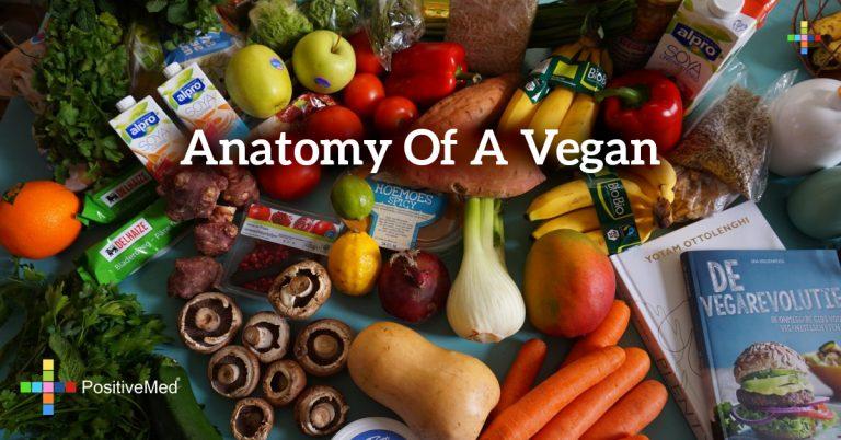 Anatomy of a Vegan