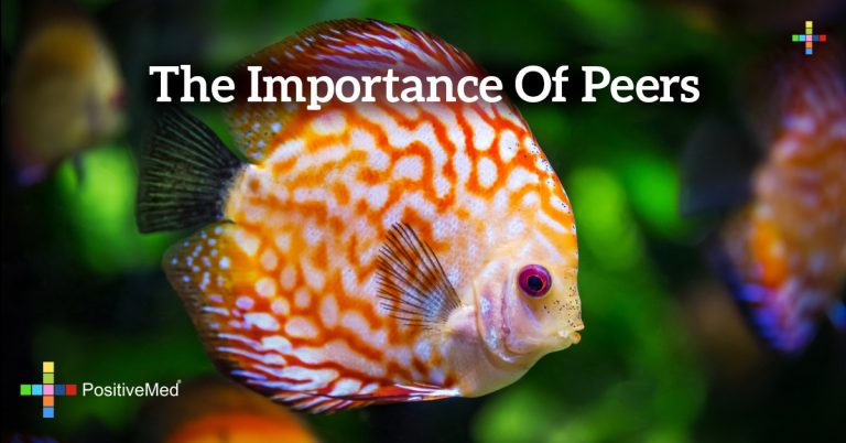 THE IMPORTANCE OF PEERS