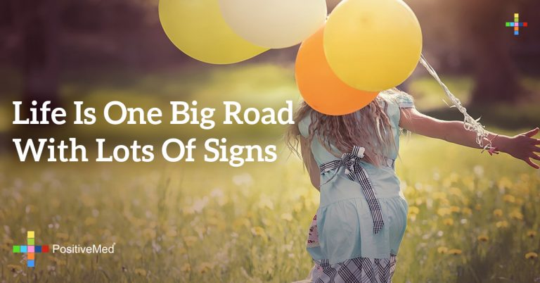 Life is one big road with lots of signs
