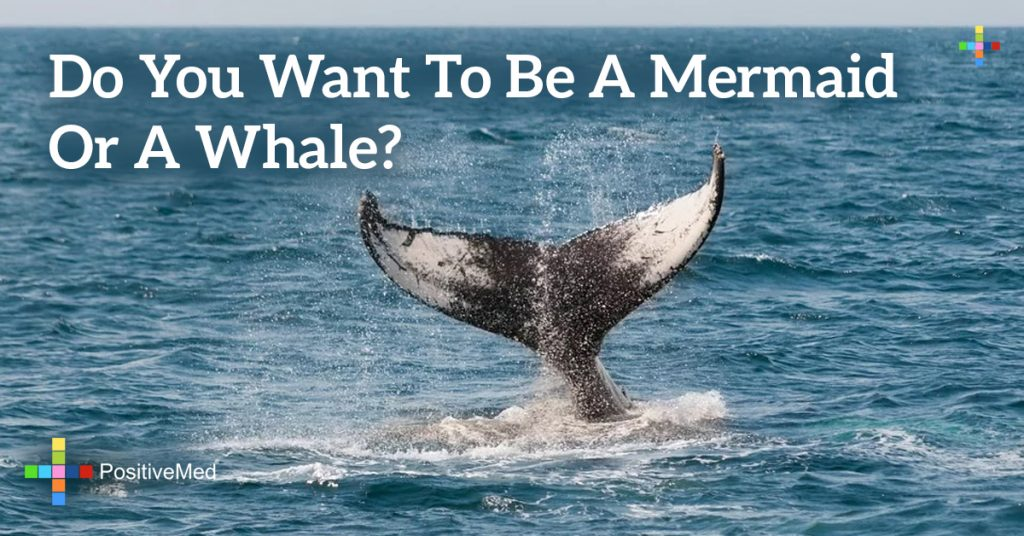 Do you want to be a mermaid or a whale?