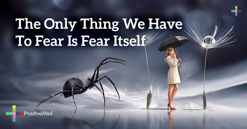 The only thing we have to fear is FEAR ITSELF