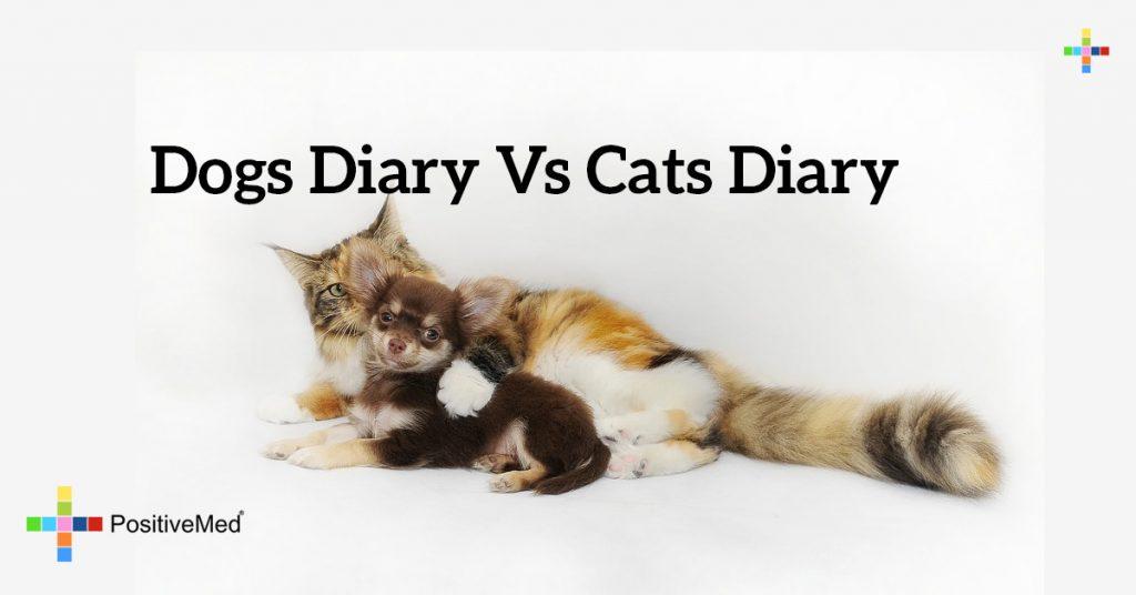 Dogs Diary vs Cats Diary