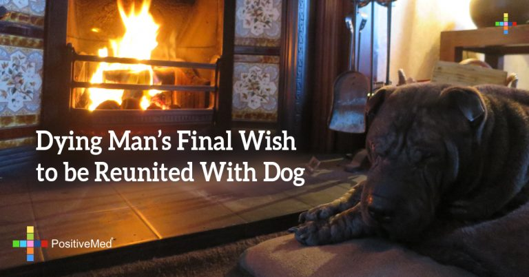 Dying Man's Final Wish to be Reunited With Dog