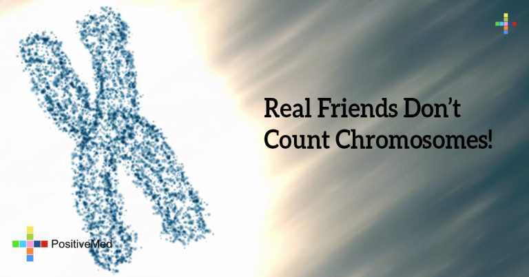 Real Friends Don't Count Chromosomes!