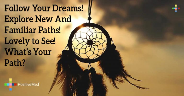 Follow your dreams! Explore new and familiar paths! Lovely to see! What's your path?